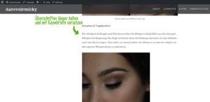 bloganalyse seo online marketing facebook marketing beauty blogger